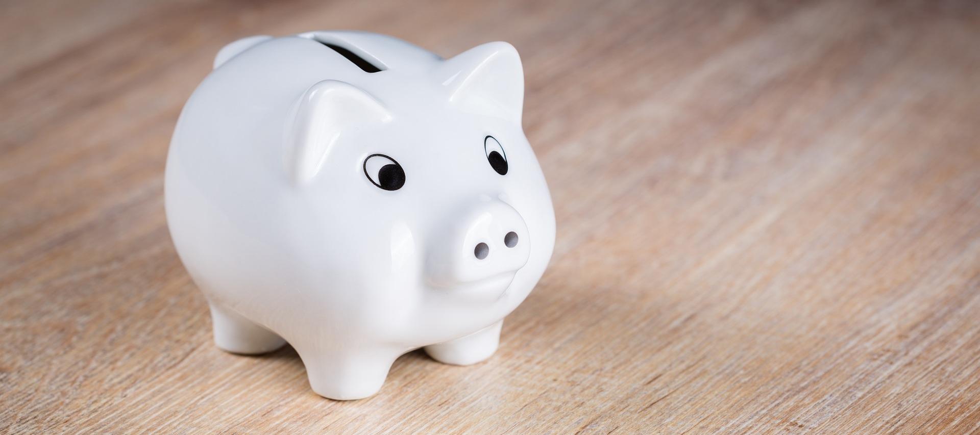 הפינה הכלכלית מאת אריה אקרמן – חסכון לכל ילד