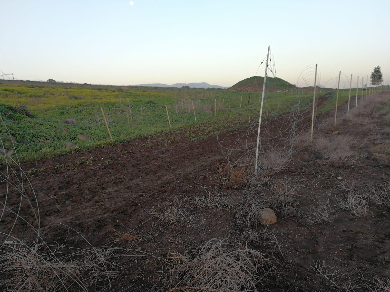 פשיעה חקלאית – בפעם השלישית בחודש האחרון