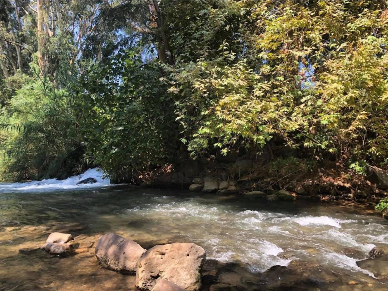 תיאסר הכנסת כלים חד-פעמיים לתחומי נהר הירדן, החצבני, הבניאס, ודן בשטחי המועצה האזורית הגליל העליון