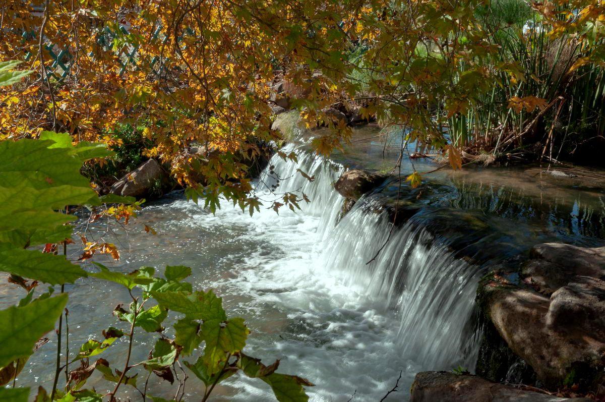 טיול אביב אל זרימות המים מטעי הפרי בפריחתם ותצפית ללבנון
