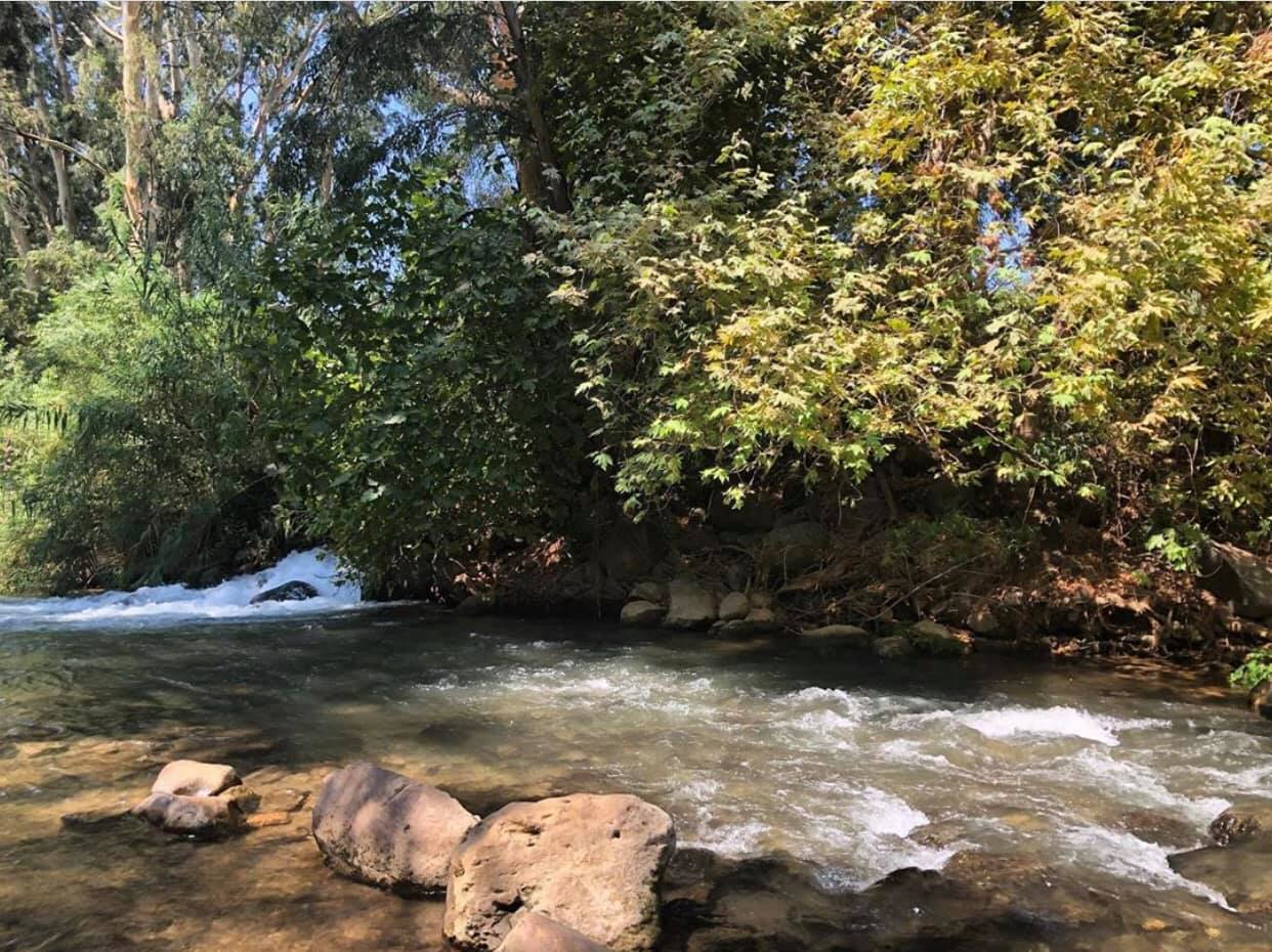 משרד הבריאות והמשרד להגנת הסביבה מדווחים על תוצאות חריגות בדיגום מים לבחינת מצב הזיהום בנחלים בצפון הארץ