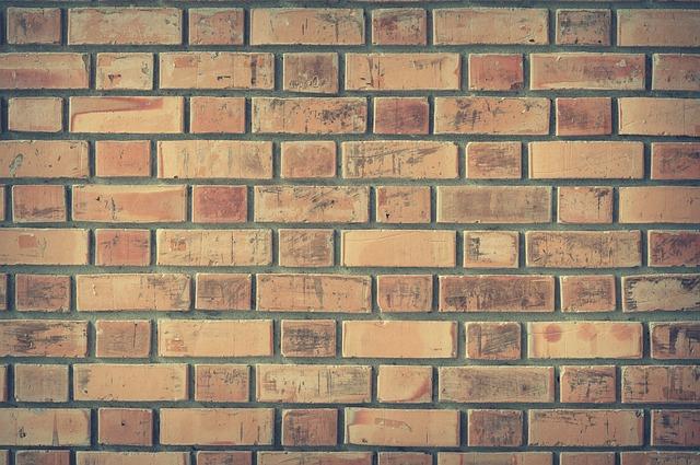 ניקוי עובש – מה הסכנות של עובש בקירות הבית שלנו?